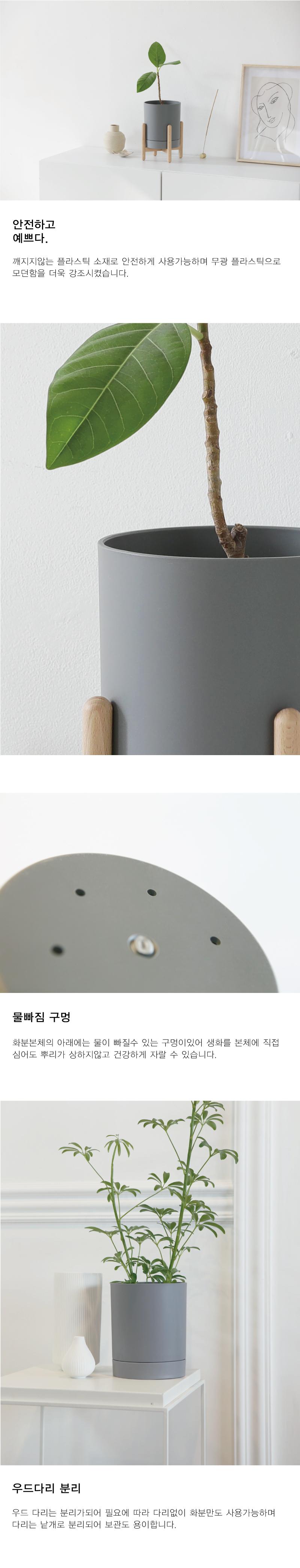 모던 우드 거치대 화분 3colors - 데이리브, 25,800원, 공화분, 미니화분